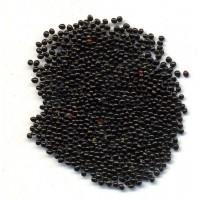 Семена Амаранта 1кг (Черный)