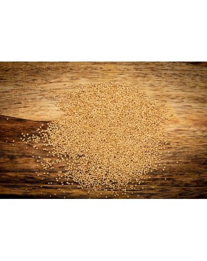 Семена Амаранта 50 кг (Премиум)